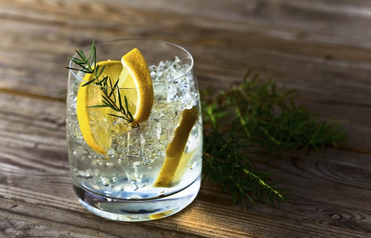 gin-and-tonic-1024x658